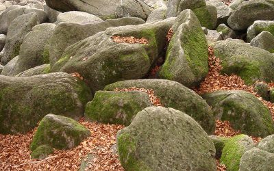 Rock Landscaping Monbulk